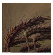 Six Bowing Corn Stalks