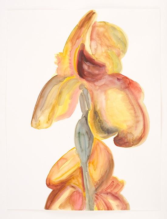 Lente (iris geel)
