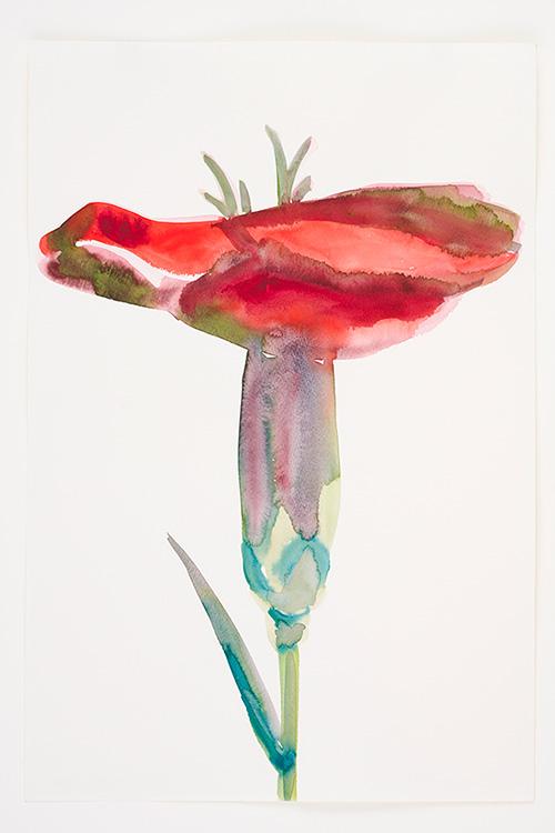 Lente (anjer rood + groen)